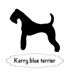 Kerry blue terrier vector