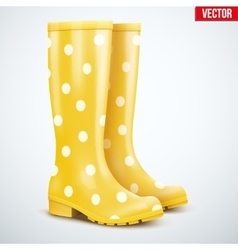 Pair of yellow rain boots vector image