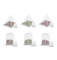 tea bag pyramids teabag tags realistic mockups vector image