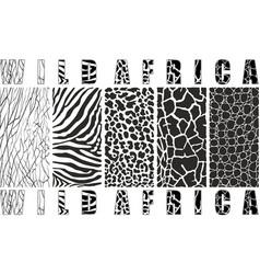 wild africa vector image