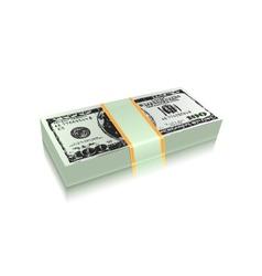 dollar bills vector image vector image