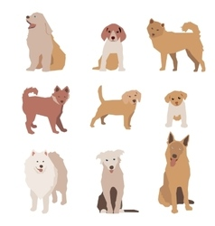 Set of dog character Dogs isolated vector image vector image