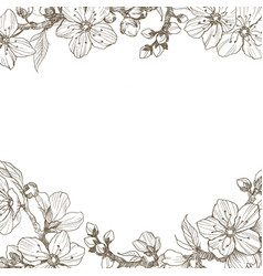 Almond blossom branch border vintage botanical vector
