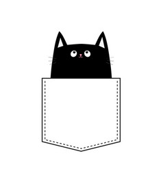Black cat in the pocket halloween animal cute vector