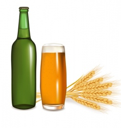 Bottle and glass of beer vector