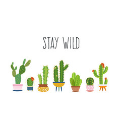 Cactus poster succulents cacti exotic cactuses vector