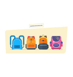 Education and study school bag luggage backpacks vector