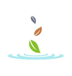 fall leaves logo template design vector image