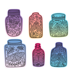 Hand drawn floral jars with moth and butterfly vector