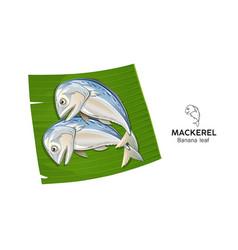 Mackerel fresh on banana leaf vector