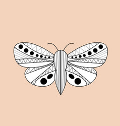 Night moth butterfly hand drawn doodle sketch vector