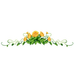 Plant with yellow flowers vector