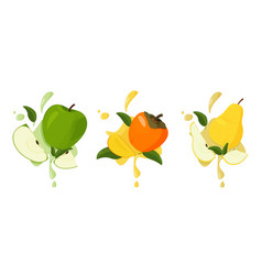 Set fresh fruits with splashes persimmon vector