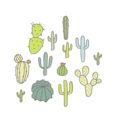 Set of cactus and succulents vector image