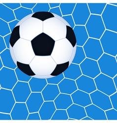 Soccer ball in the net vector image