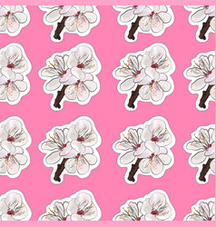 blooming apricot seamless background vector image