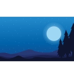 At night Spruce and hill scenery of silhouettes vector