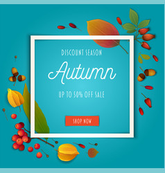 Autumn composition with autumn leaves on teal vector