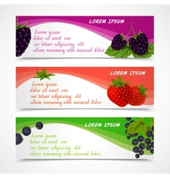 Berries banners set vector image