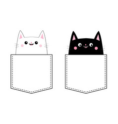 black white cat set love couple in the pocket vector image