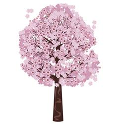 Blooming Sakura Tree vector