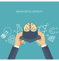Brains academic cap vector