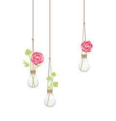 flower in a light bulb vector image
