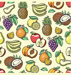 Fruits fruity apple banana and exotic vector