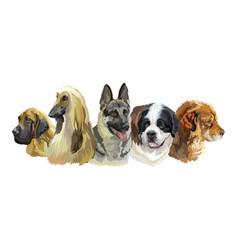 Large dog breeds vector