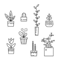 Line house plants icon set vector image