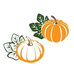 Pumpkins with leaves vector image
