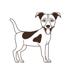 Silhouette cute jack russell terrier dog on vector