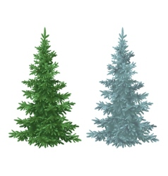 Christmas green and blue spruce fir trees vector image vector image
