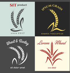 ears of wheat logo set vector image