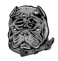 Bully dog exotic vector