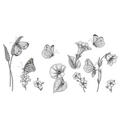 Hand drawn monochrome wild flowers and vector