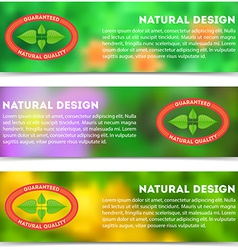 Set of eco banners with flat vintage label vector image