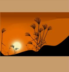 grass and sunset vector image