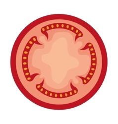 Tomato slice red graphic vector