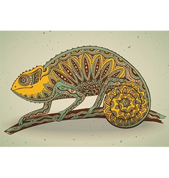 picture of colorful chameleon lizard in graphic vector image