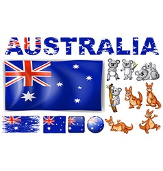 Australia flag in different designs and wild vector image