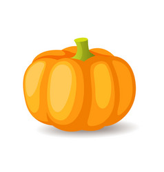 Bright orange pumpkin icon isolated organic vector