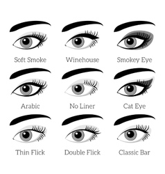 Eye makeup types infographic vector