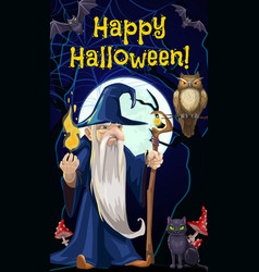 Halloween wizard sorcerer and witch black cat vector