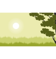 Landscape of grass with tree at spring vector