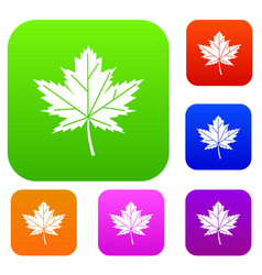 maple leaf set collection vector image