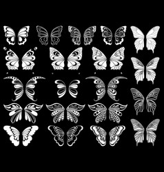 set of twenty white butterflies over black vector image