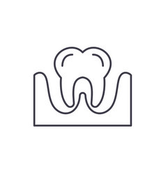 tooth line icon concept tooth linear vector image