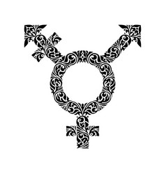 transgender black ornate symbol vector image