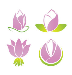 lotus symbol logo collection set vector image vector image